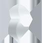 laurent bayot logo metal